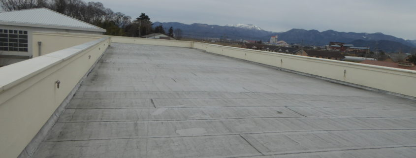 Flat elementary school roof where school system inquired about emergency roof repair.
